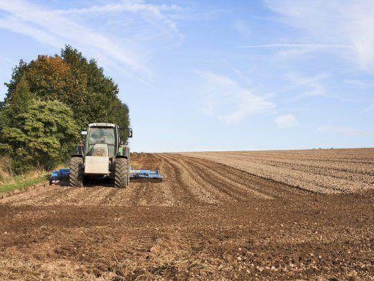 El Banco Nación destinará $10.000 millones para financiar a pequeños productores agropecuarios