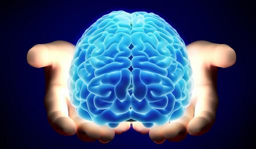 Día mundial del cerebro: claves para mejorar la salud mental desde la Neurociencia